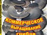 """Книга """" Промышленное Выращивание грибов Вешенки"""" - фото 1"""