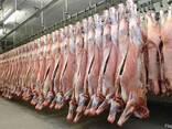 Оптом Мясо Баранина Говядина Свинина. - фото 7